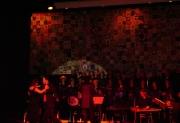 turk-muziklerinden-dunya-muziklerine-konseri-7